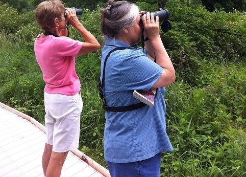 Mills Park Bird Watching